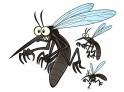 moquito-bite-remedies-083114